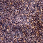 the_rouge_rooibos_bio_fermente